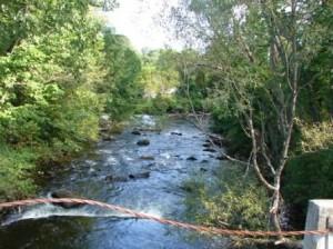 Henry David Thoreau Hike on Mt. Greylock @ Bellows Pipe Trail | North Adams | Massachusetts | United States