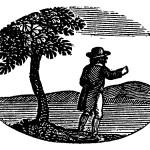 Thoreau Commemorative Hike on Mount Greylock @ Mount Greylock