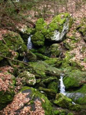 The Mahican-Mohawk Trail