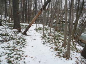 A spring walk from Cable Mills to the Hoosic @ Linear Park
